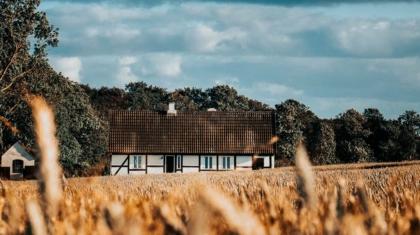 Husidyl i Hjørring